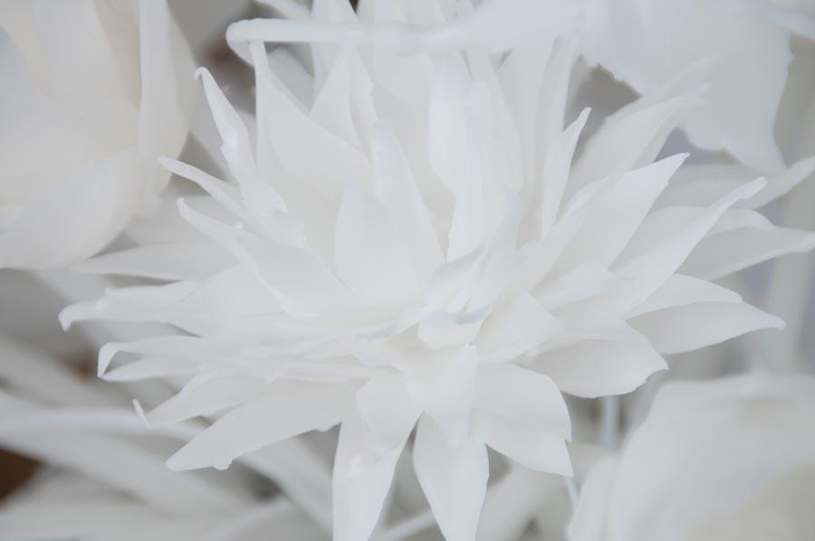 wax flowers